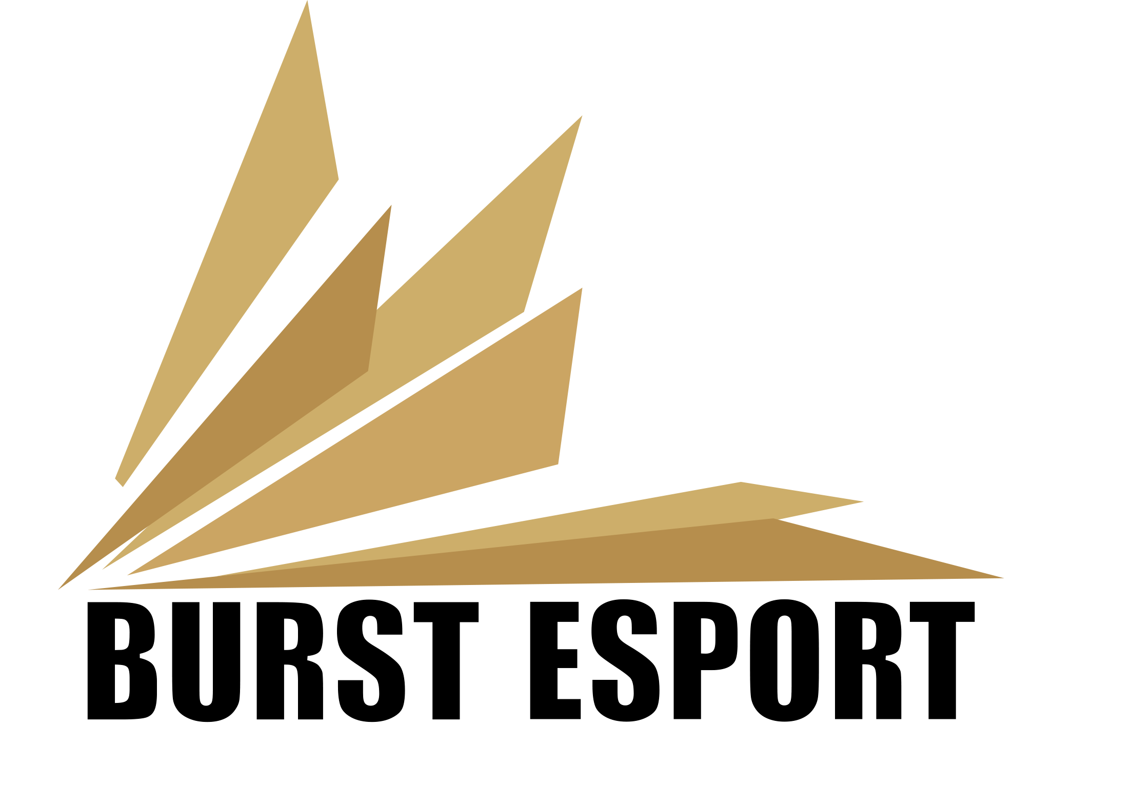 Burst E-Sport